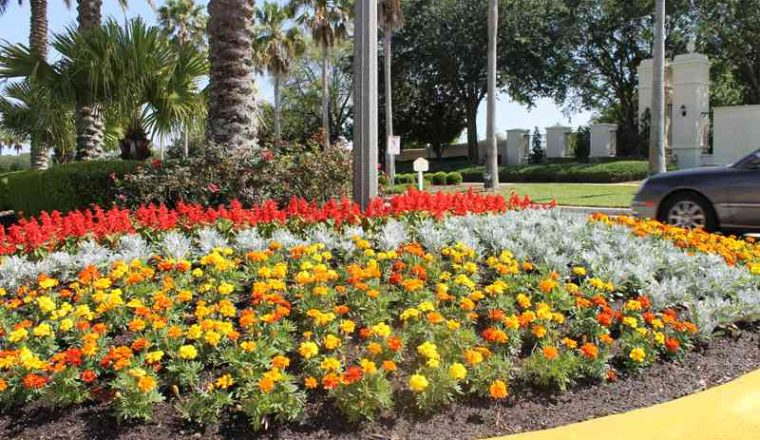 Servello & Son, Inc. – Commercial Landscaping in Central Florida