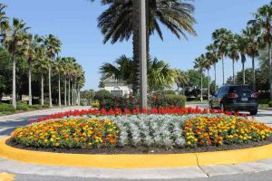 Orlando Landscaping Showcase
