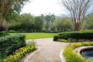 winter park commercial landscaping