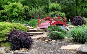 Commercial Landscaping in East Orlando