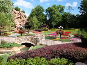 Commercial Landscaping Lake Mary