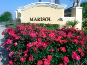 Colorful Landscaping Display Brightens a Sign