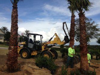 Installation Team Planting