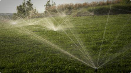 Even, Efficient Watering