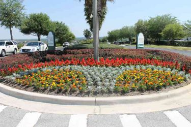 Orlando Landscaping Showcase